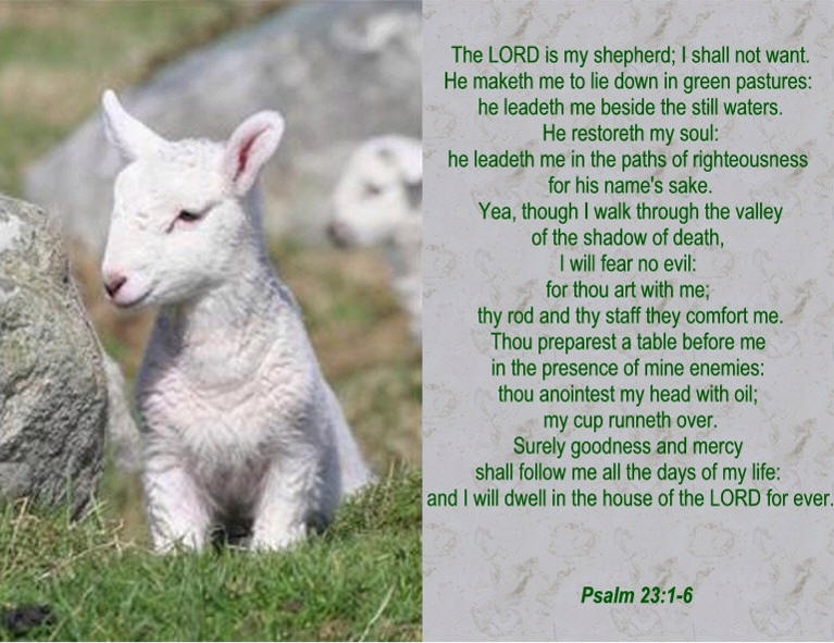 Psalm 23 wallpaper 767x591