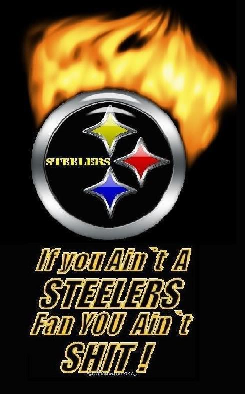steelers steelers 489x786