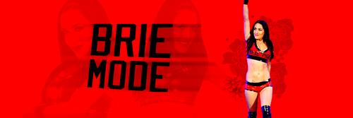 Brie Bella headers icons Brie mode shirt 500x167