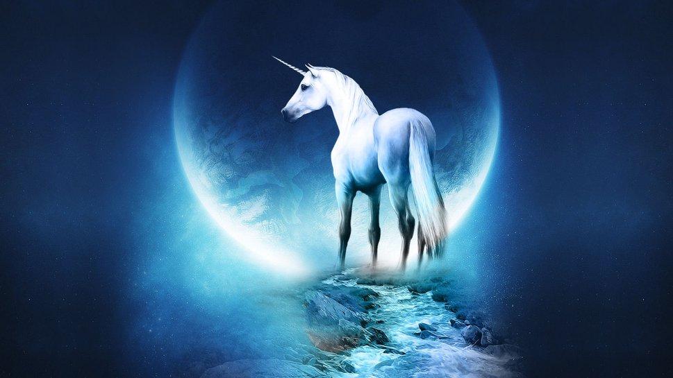 Fantasy Unicorn Wallpaper High Resolution 10538 HD Image 969x545 969x545