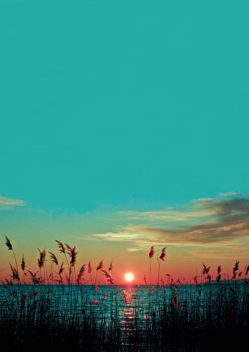 49 2 Samsung Galaxy Grand Wallpaper On Wallpapersafari