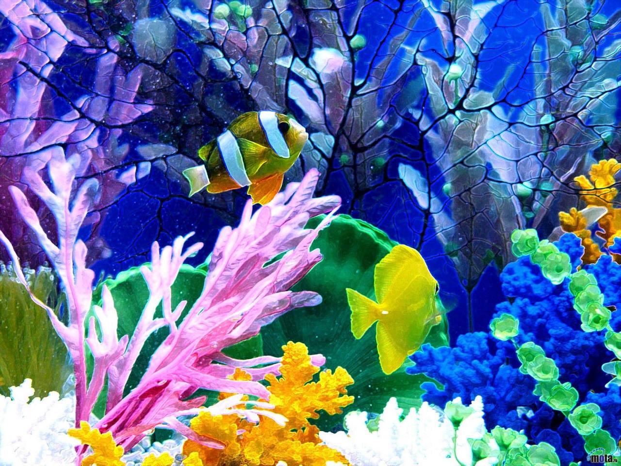 HD Desktop Wallpapers Aquarium hd wallpaper aquarium wallpaper 1280x960
