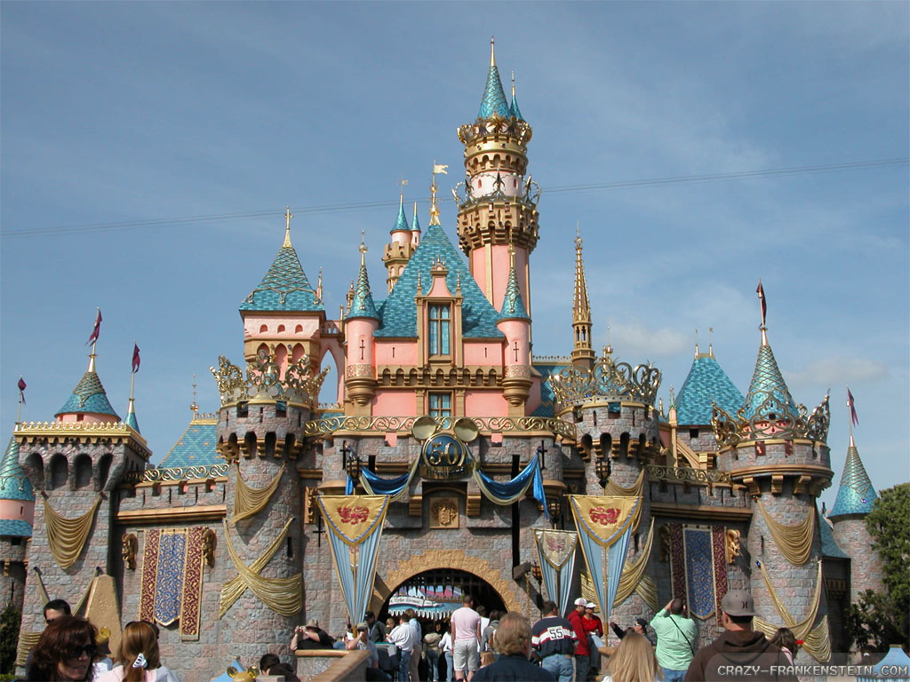 Disney Castle Wallpaper 736 Hd Wallpapers in Cartoons   Imagescicom 1024x768