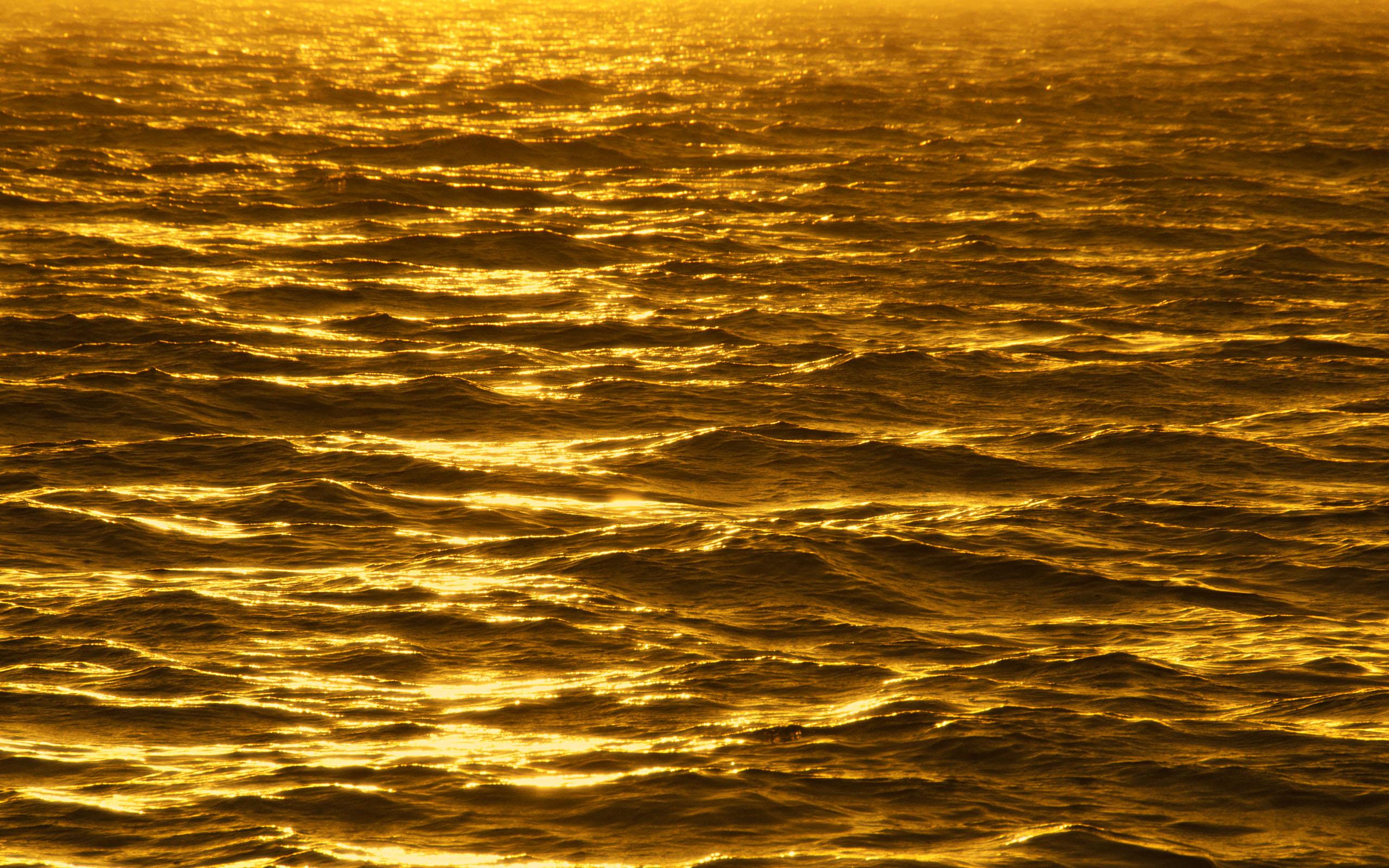 Buy Wallpapers Gold Wallpaper 2560x1600