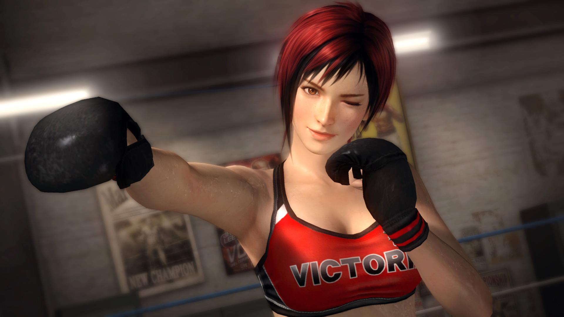 2015 By Stephen Comments Off on Dead or Alive 5 HD Wallpaper 1920x1080