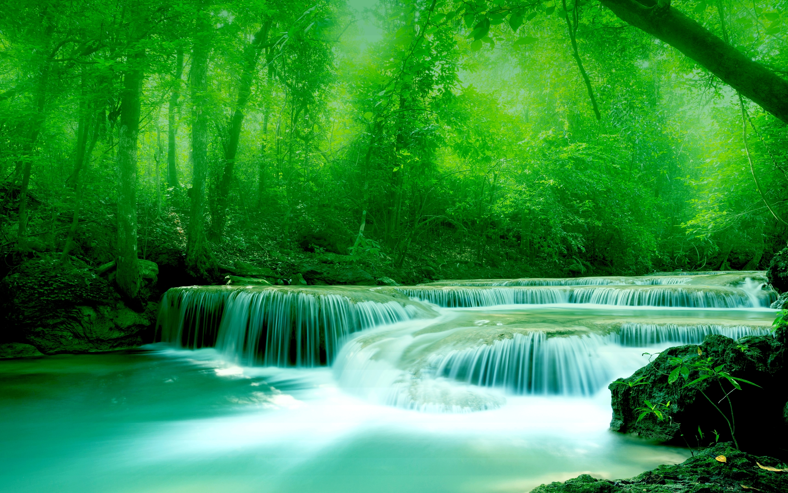 Wallpaper River Water Rocks Trees Greenery 2560x1600