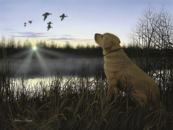 Anthony Padgett named Ducks Unlimited International Artist of the Year 575x432