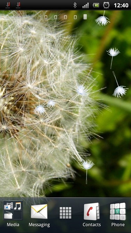 Download Blowing Dandelion Live Wallpaper for your Android phone 449x800
