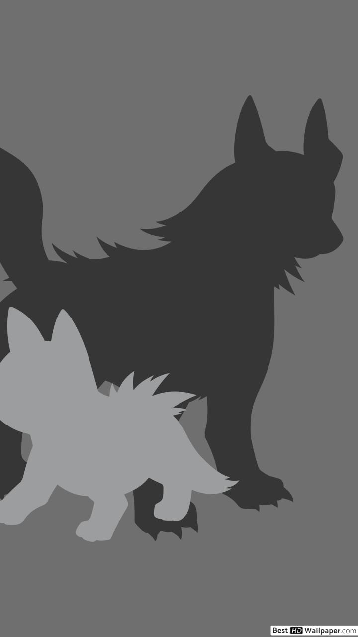 Mightyena and Poochyena of Pokemon HD wallpaper download 720x1280