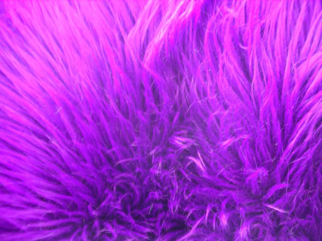 Purple Fur Wallpaper 1024x768