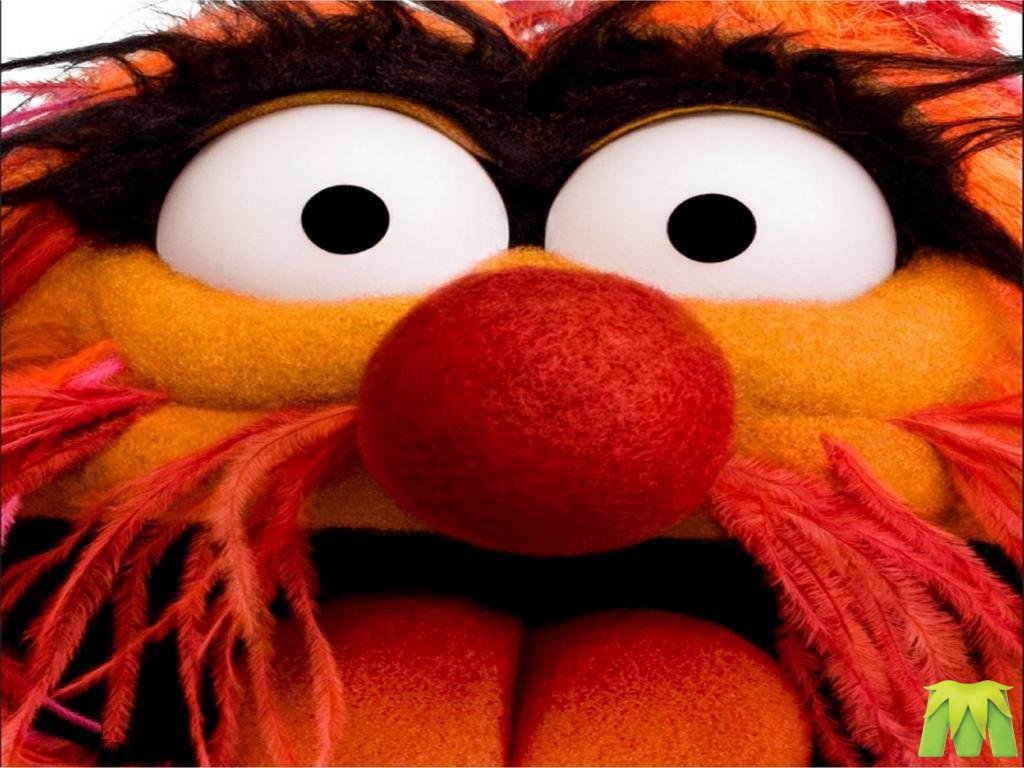 animal muppet wallpaper - photo #18