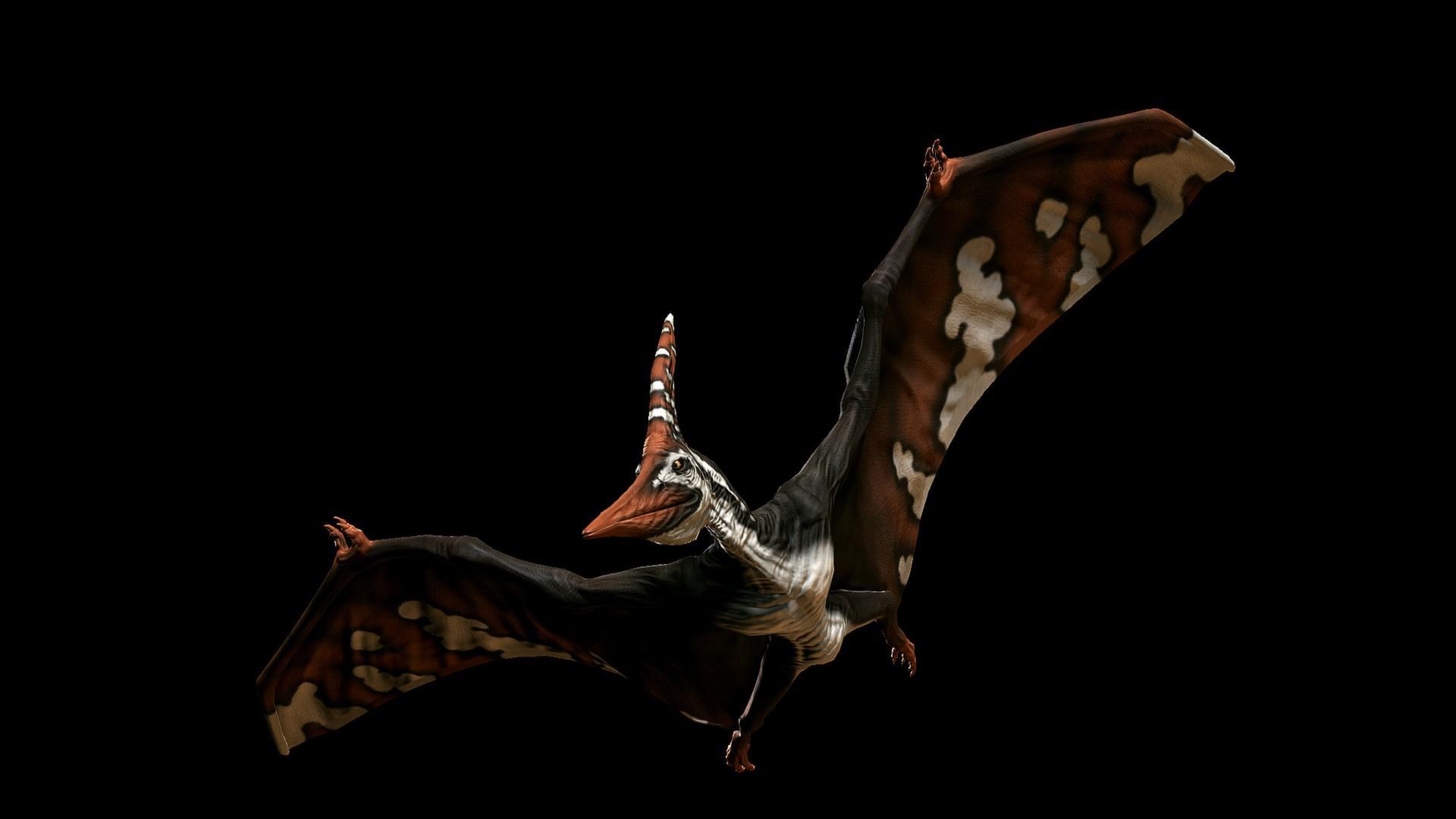 PRIMAL CARNAGE fantasy dinosaur u wallpaper 1920x1080 169035 1920x1080