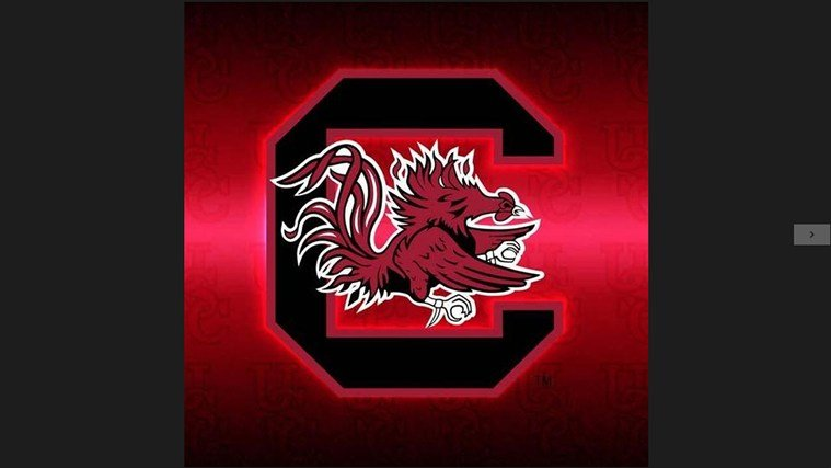 College Fight Songs   South Carolina Gamecocks Album App 759x427