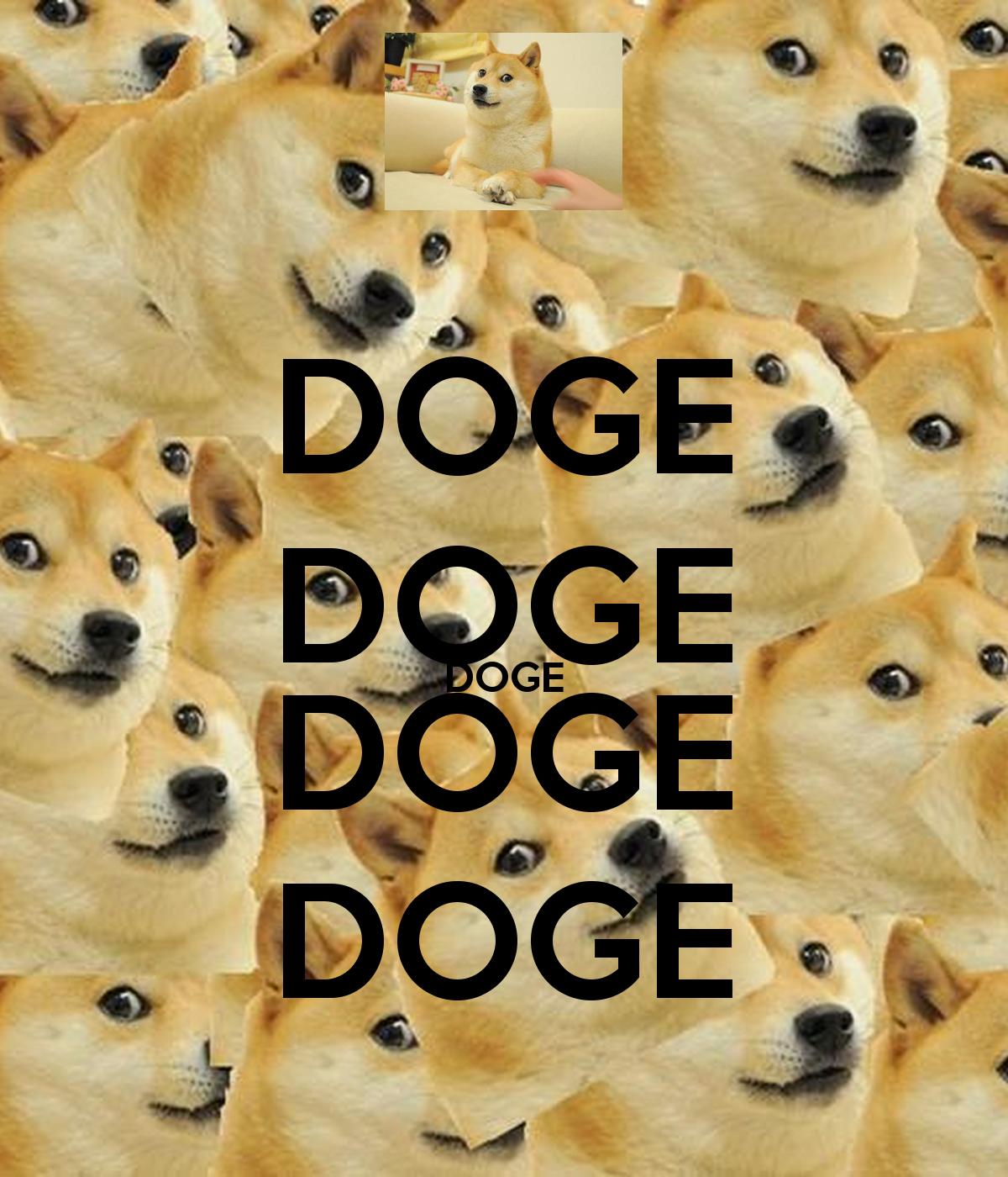 doge doge doge doge doge 2png 1200x1400