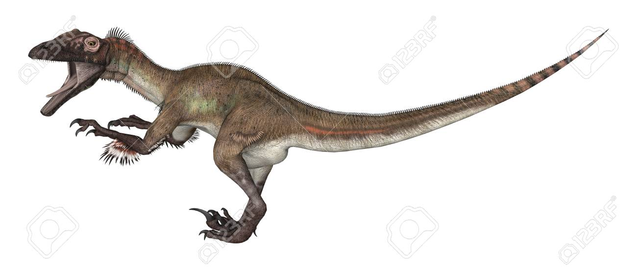 3D Rendering Of A Dinosaur Utahraptor Isolated On White Background 1300x551