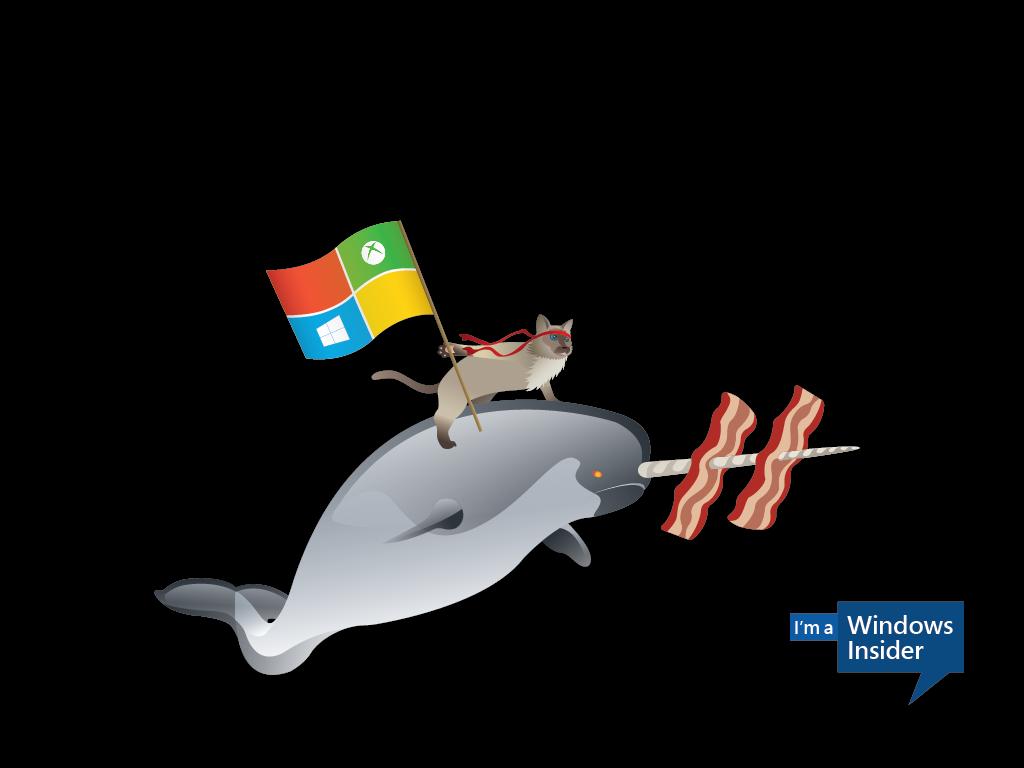 the Windows 10 ninjacat meme with new Microsoft desktop wallpapers 1024x768