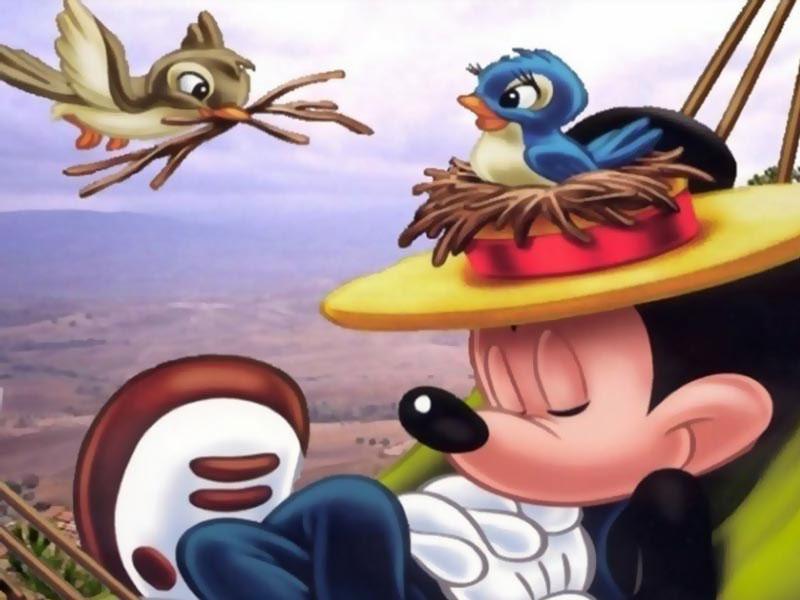 Cartoon Network Wallpapers Cartoon Network Desktop Backgrounds 800x600