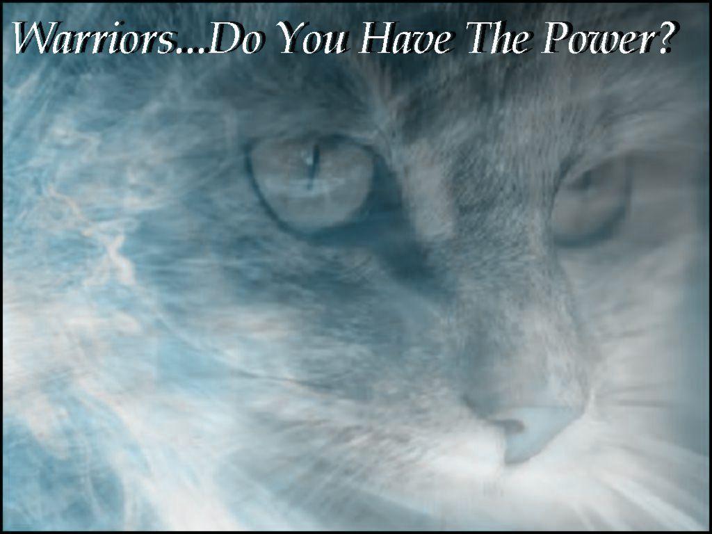 Warrior Cats Wallpapers Desktop 1024x768