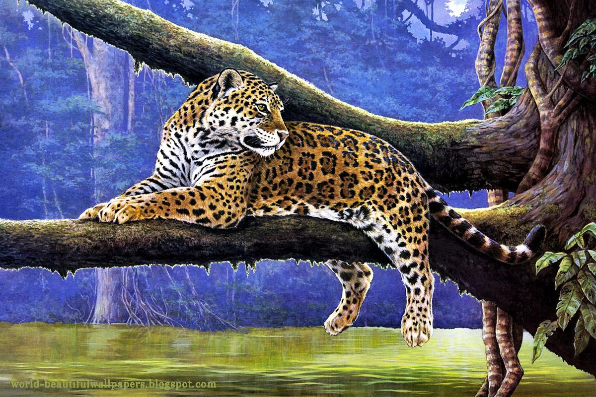 Beautiful Nature And Animal Wallpaper