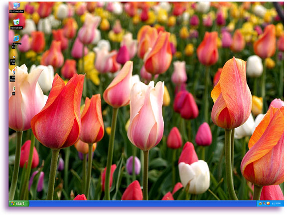 Desktop Wallpaper Spring Scenes 580x433