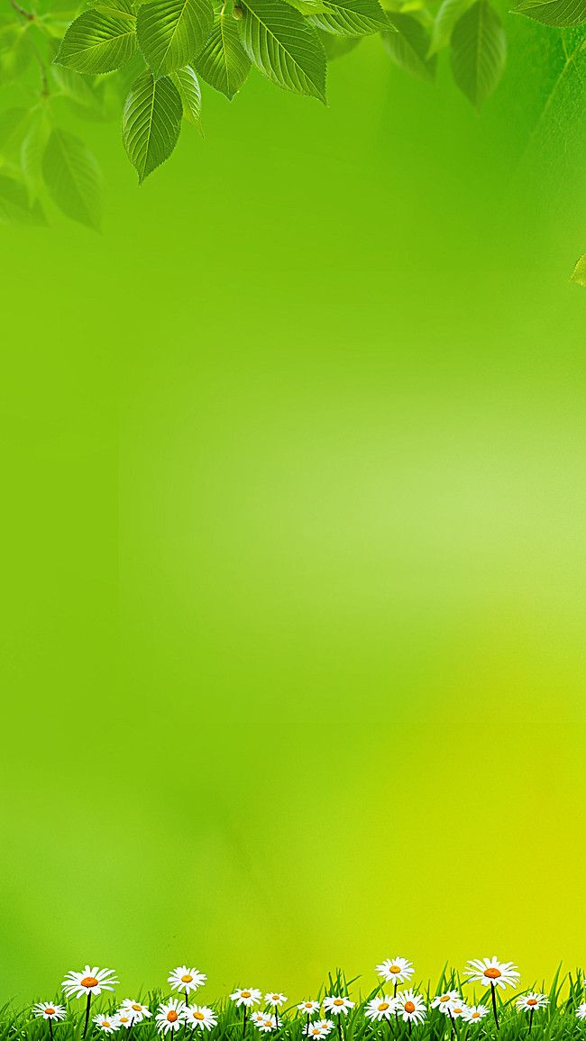 Simple Green Background Design typography in 2019 Green 650x1155