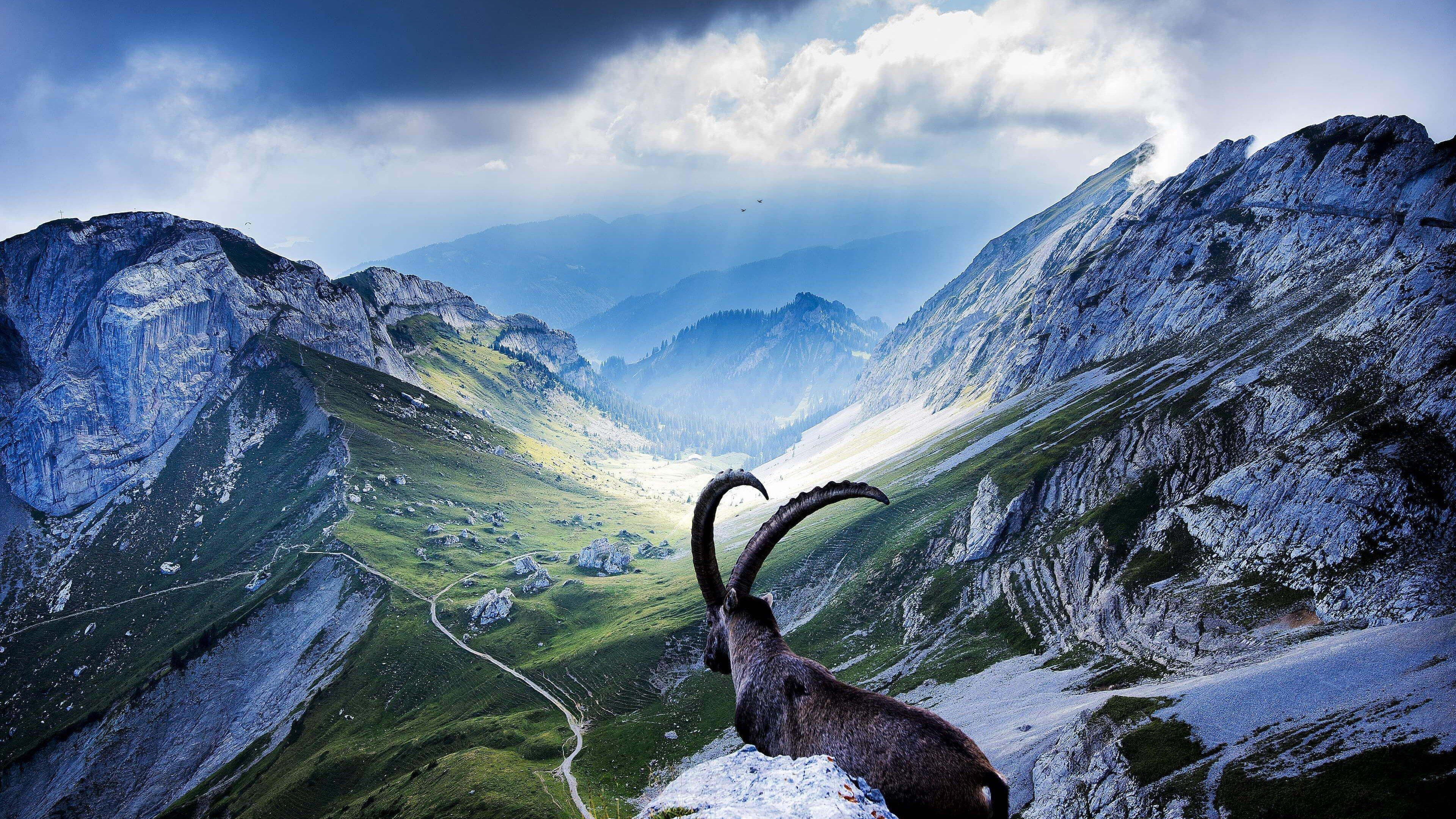 Switzerland HD wallpaper for 4K 3840 x 2160   HDwallpapersnet 3840x2160