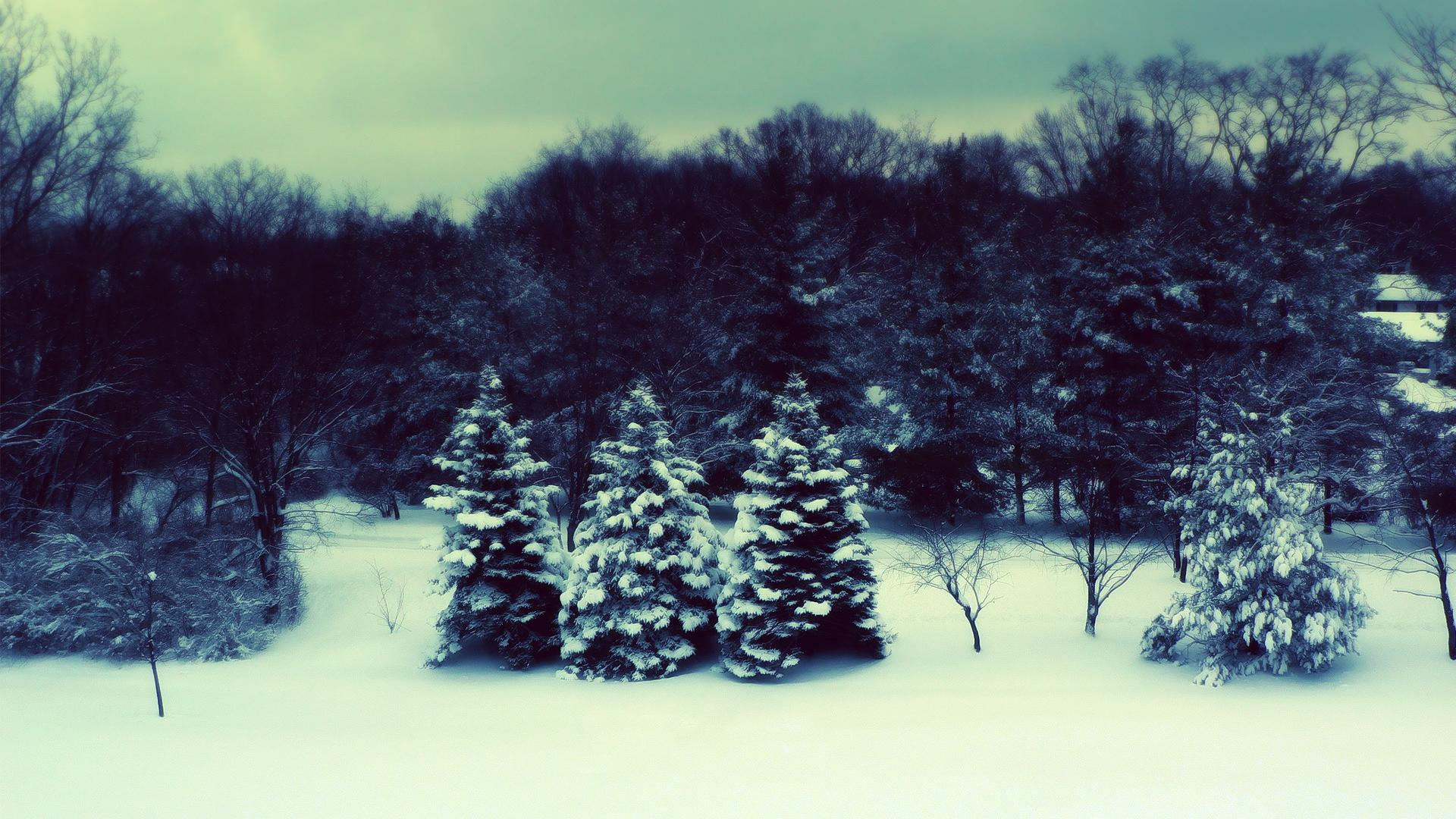 snow and winter desktop backgrounds wide wallpapers1280x8001440x900 1920x1080