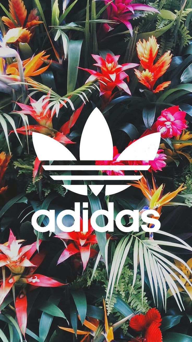 Best 25 Adidas logo ideas only Logo adidas 736x1309