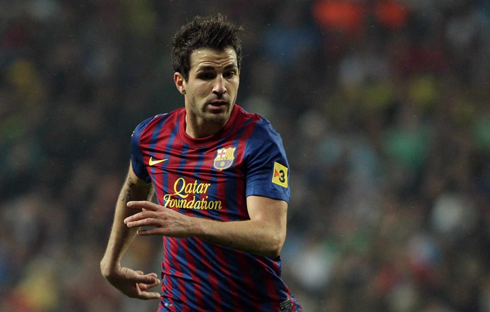 Fabregas Football Players HD Wallpaper Cesc Fabregas Football Players 1600x1021
