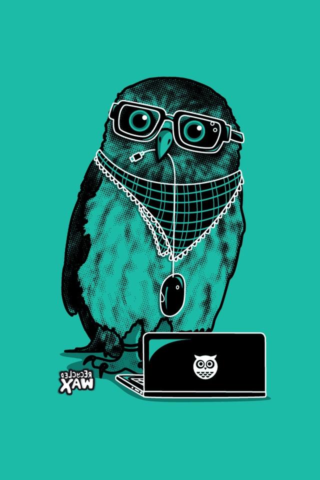 owl iphone wallpaper wallpapersafari
