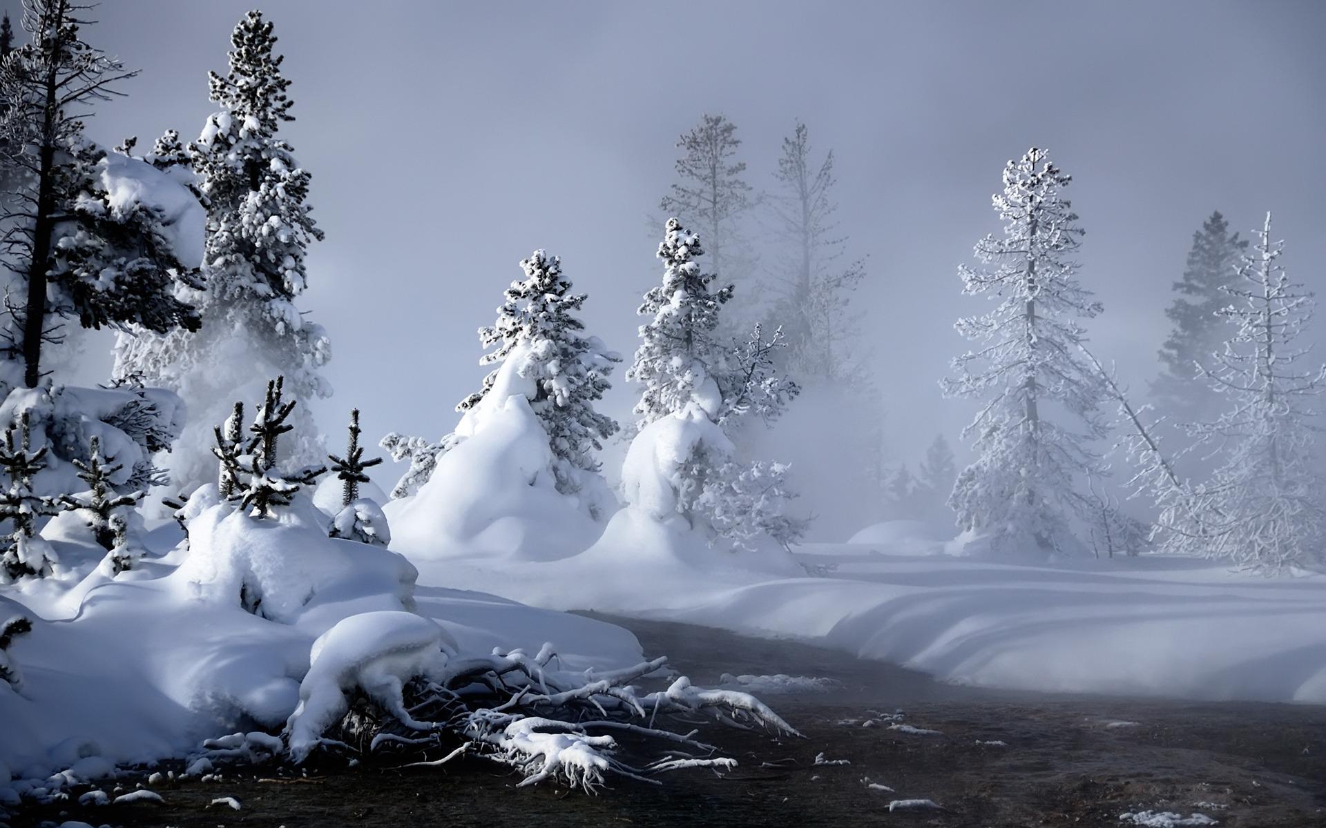 25 Stunning Winter Wallpapers 1920x1200