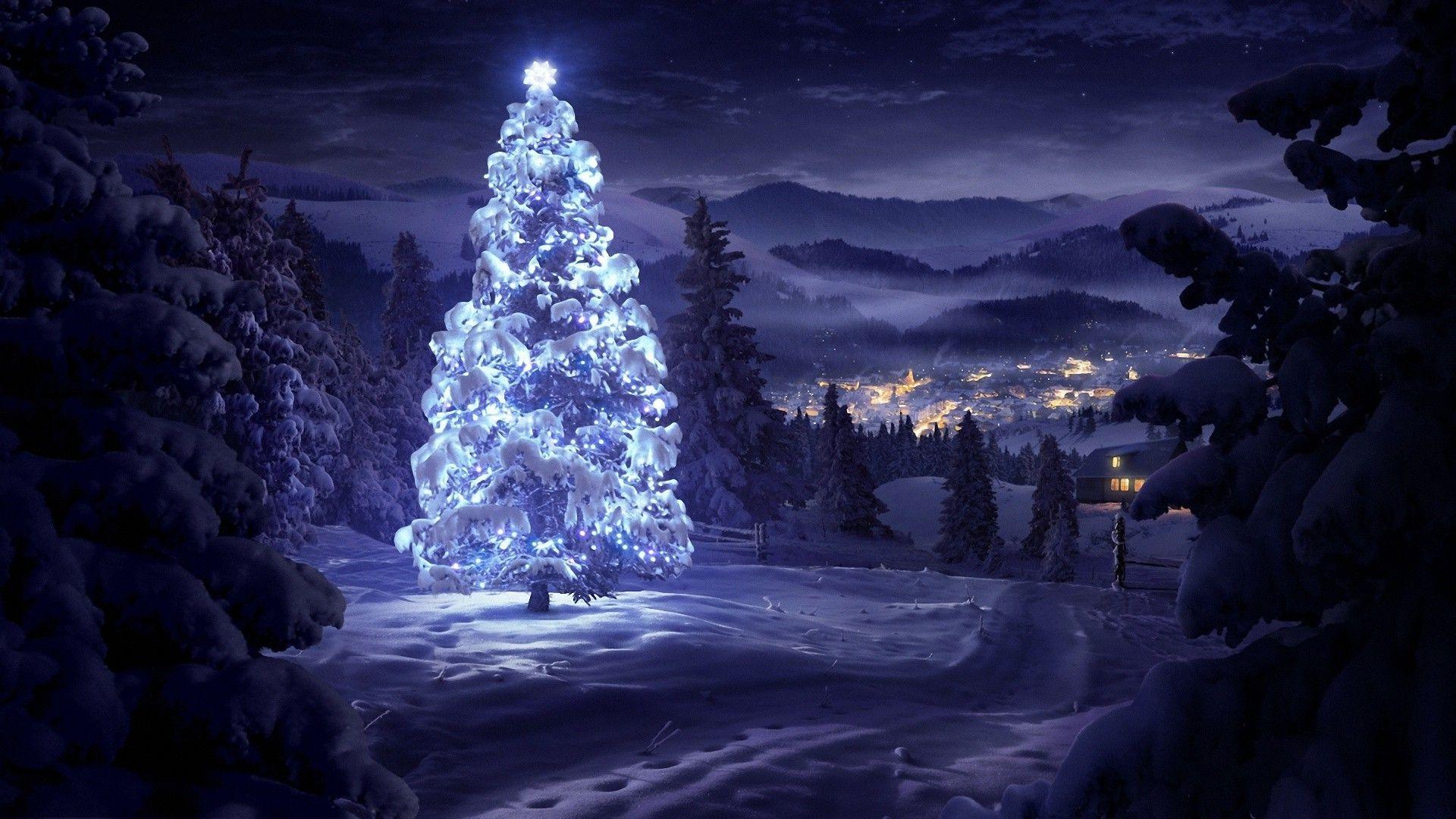 rate 0 tweet 1920x1080 holidays snow tree merry christmas christmas 1920x1080