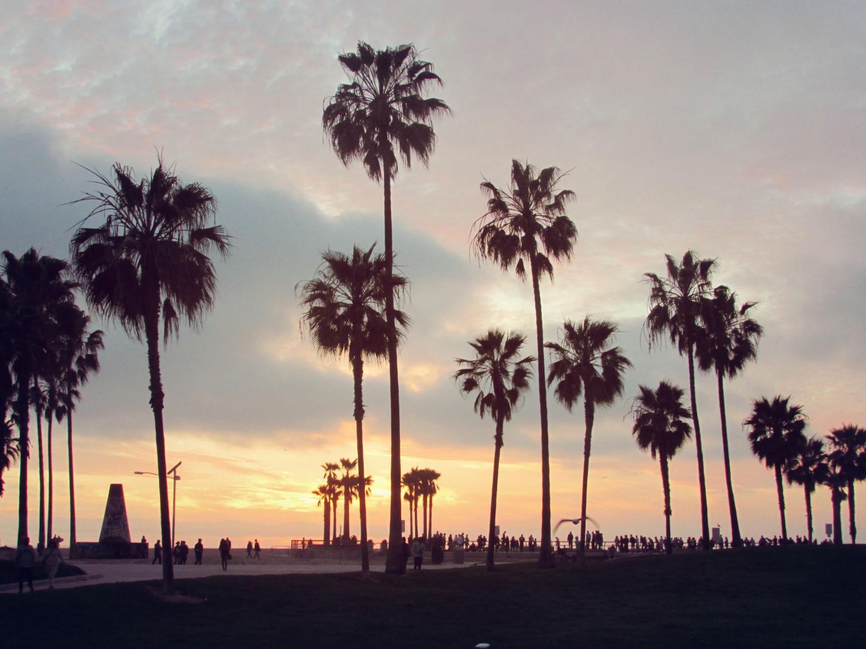91] Venice Beach Wallpapers on WallpaperSafari 1718x1288