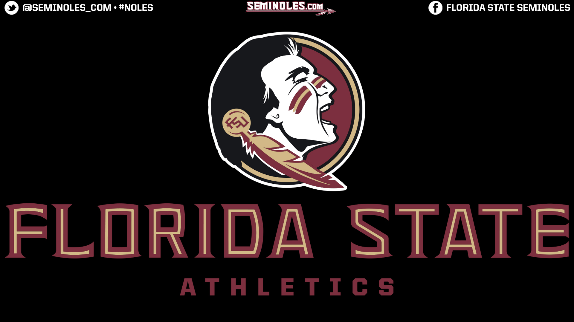 Florida State Football 2013 Wallpaper Wallpapers   florida state 1920x1080