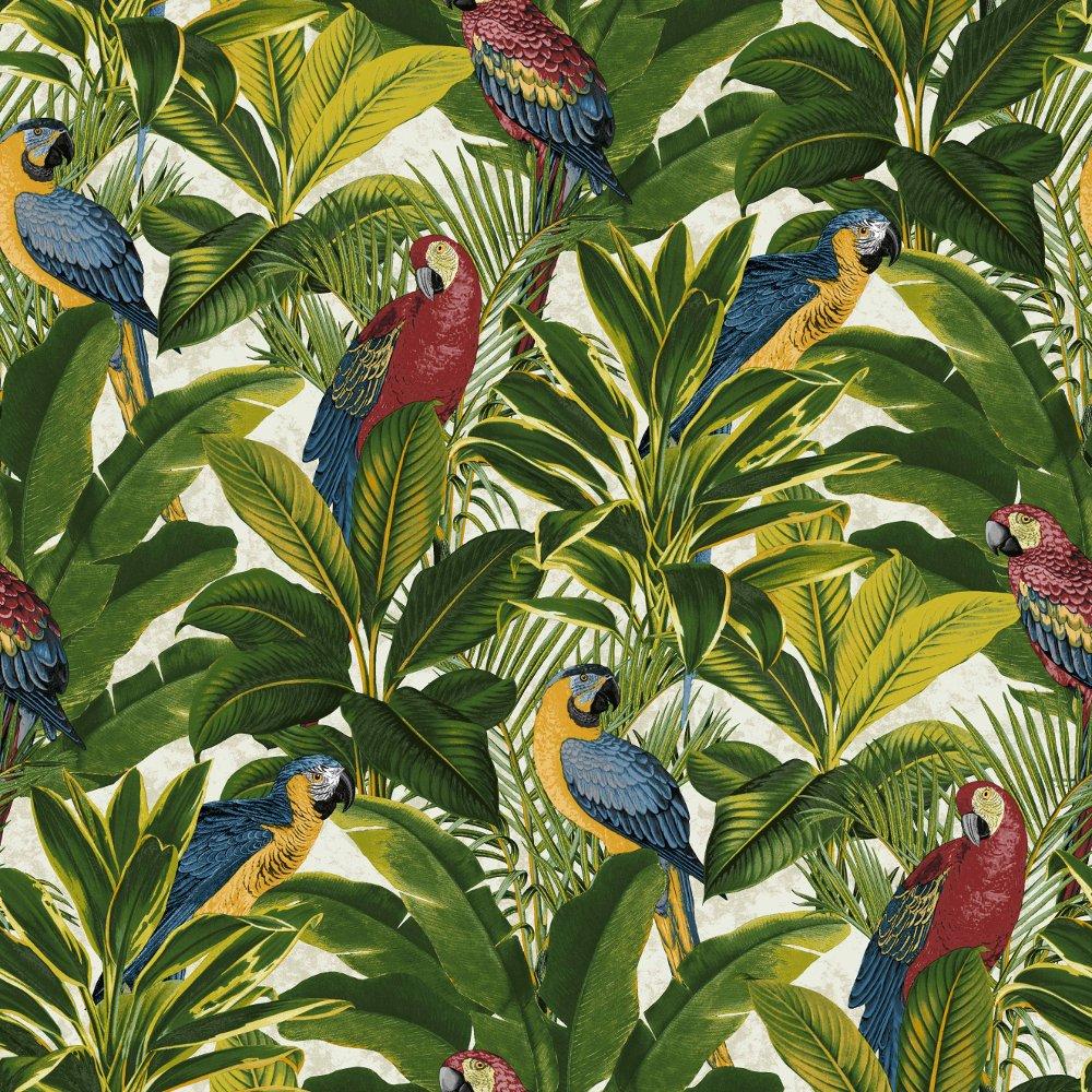 Exotic Bird Pattern Parrot Motif Tropical Leaves Wallpaper A11502 1000x1000