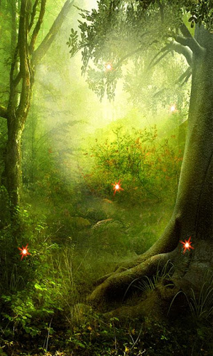live wallpaper of magic forestAlso very relaxingThis live wallpaper 307x512