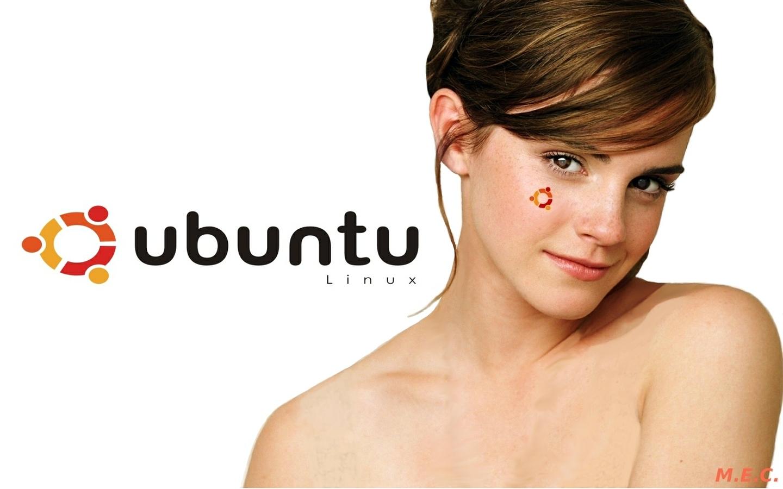 GnuLinux Open Source Systems Sfondi Ubuntu 2 1440x900
