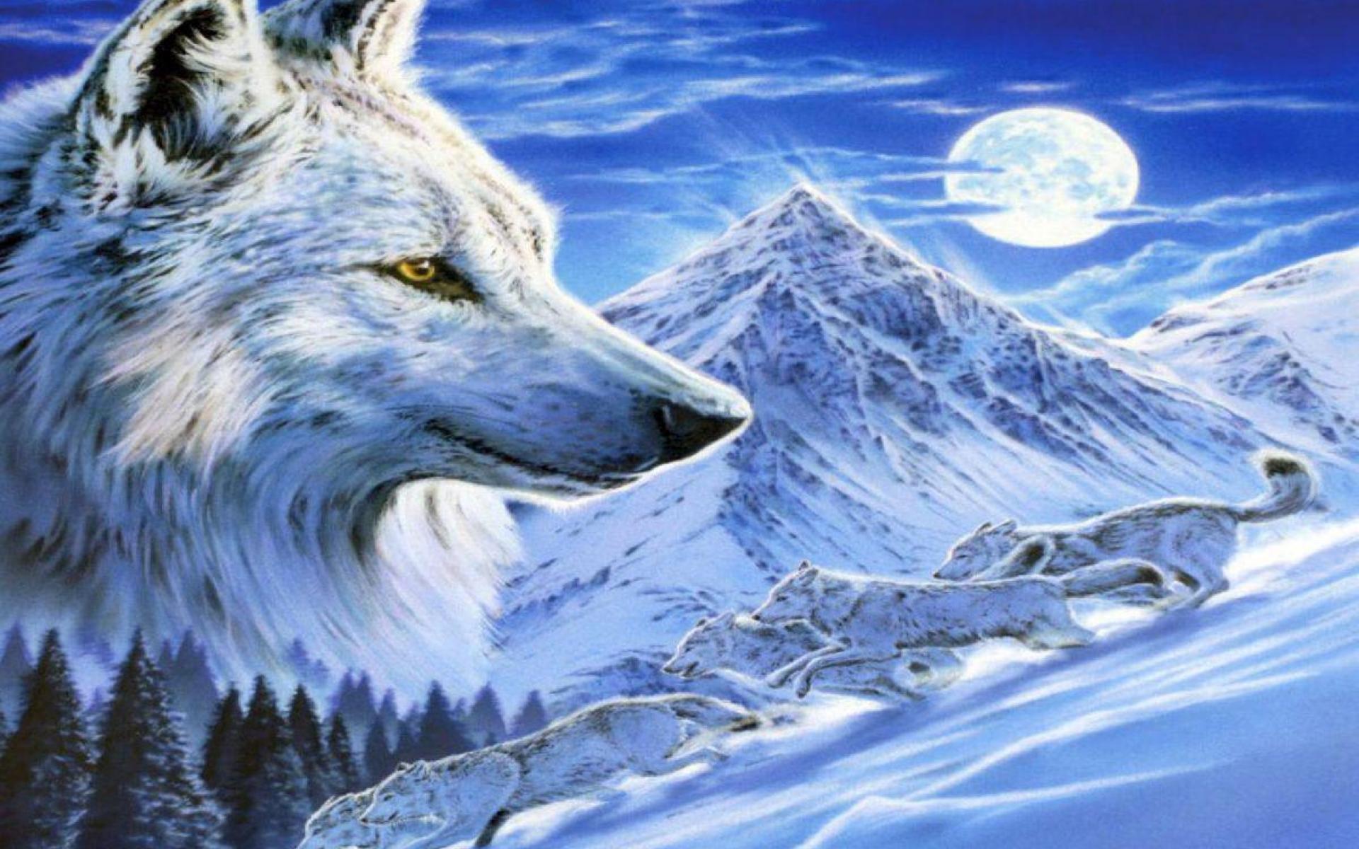 том, что модные картинки волки относится