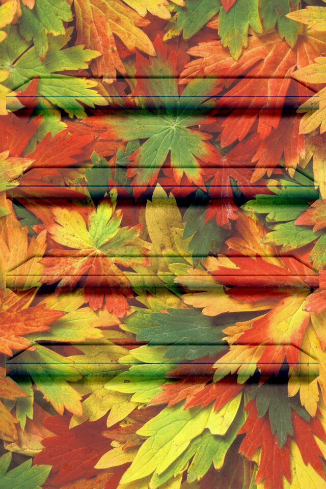 Fall leaves 640x960