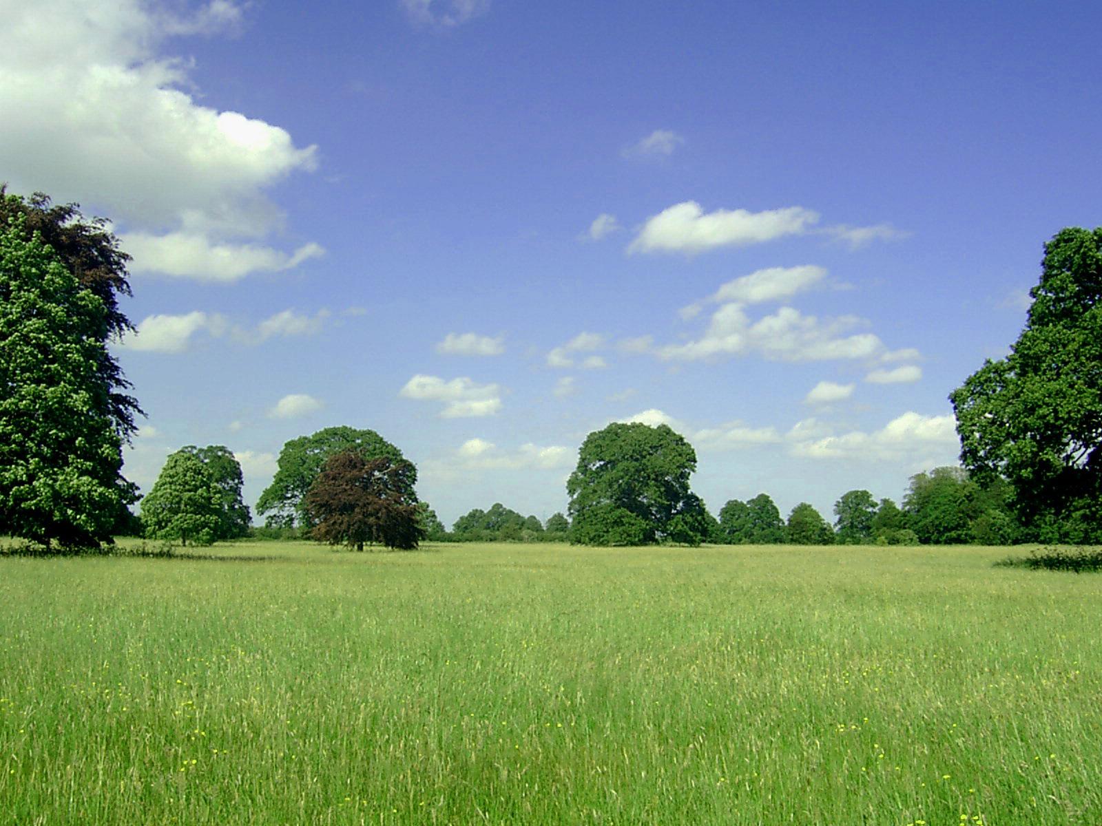 73 Free Landscape Backgrounds On Wallpapersafari