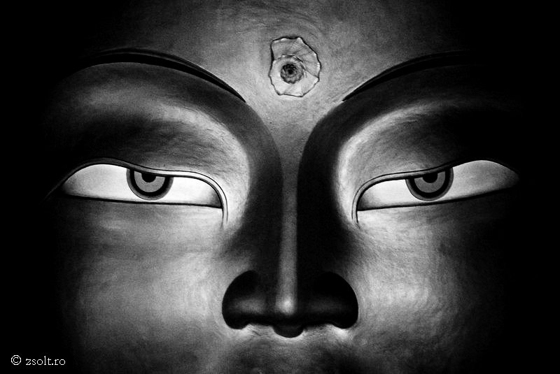 Buddhist Wallpapers   lots of lots of Tibetan Buddhist Wallpapers 800x535