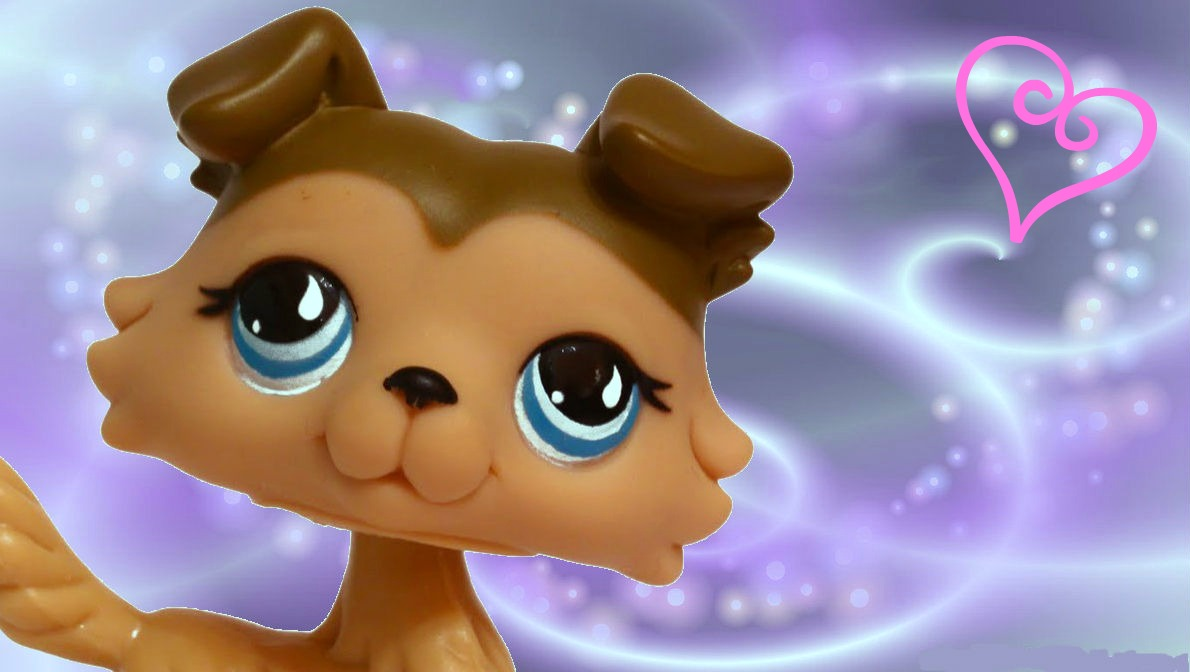 Littlest Pet Shop 893 Icon by rainbowkitttylover29 1190x672