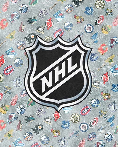 NHL Teams Logo Wallpaper Nhl Wallpaper Hockey Logos Play Hockey 500x625