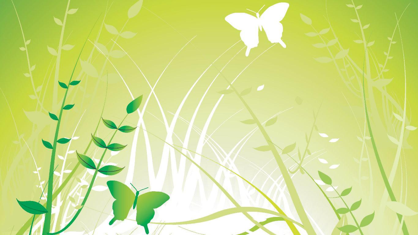 Gallery Wallpaper Green Butterfly - WallpaperSafari