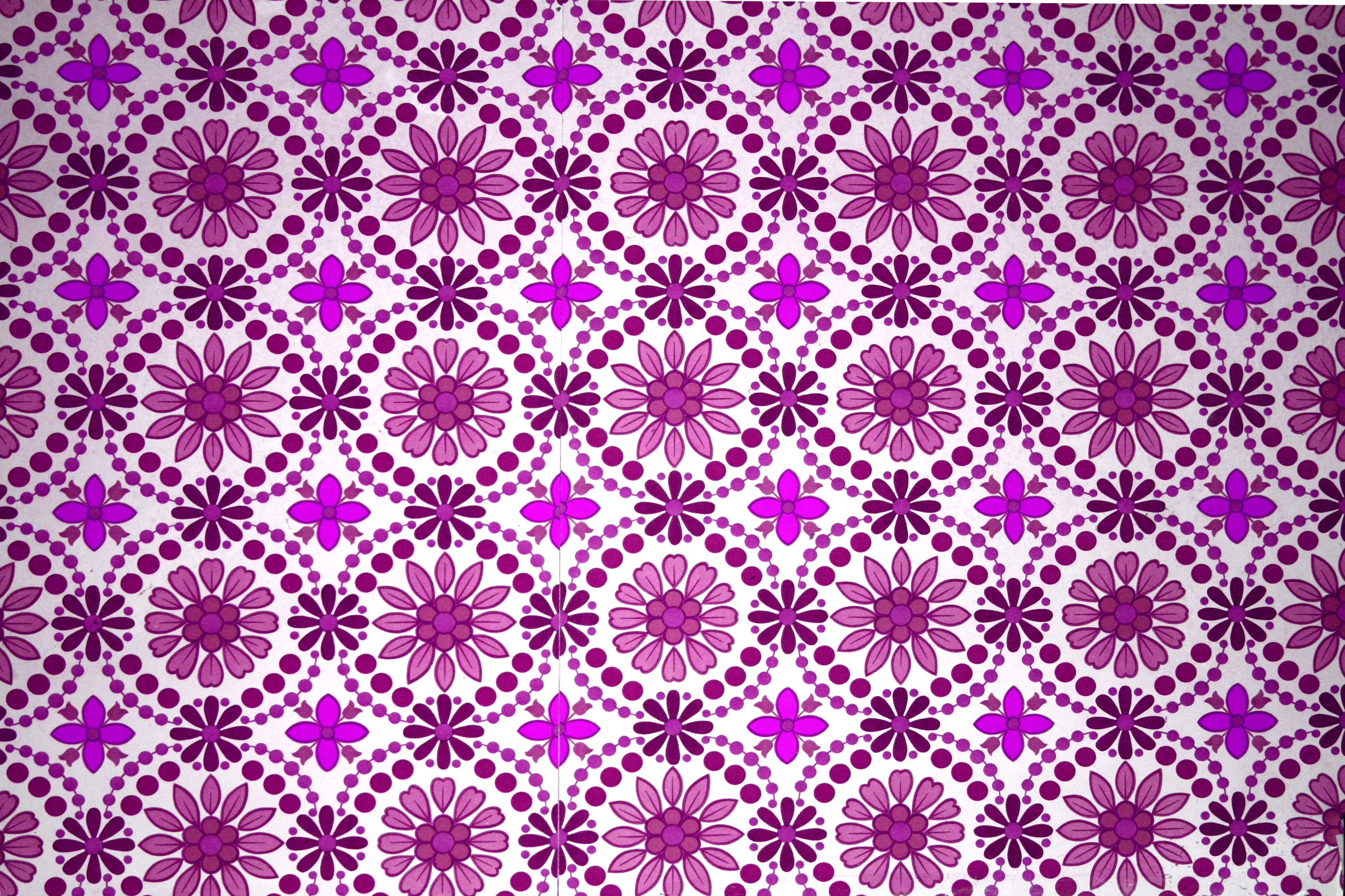 Magenta Flowers Wallpaper Texture Picture Photograph 3888x2592