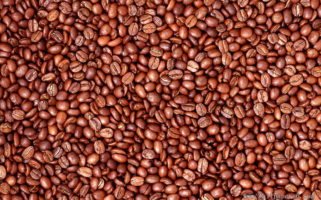 coffee beans background wallpapersafari
