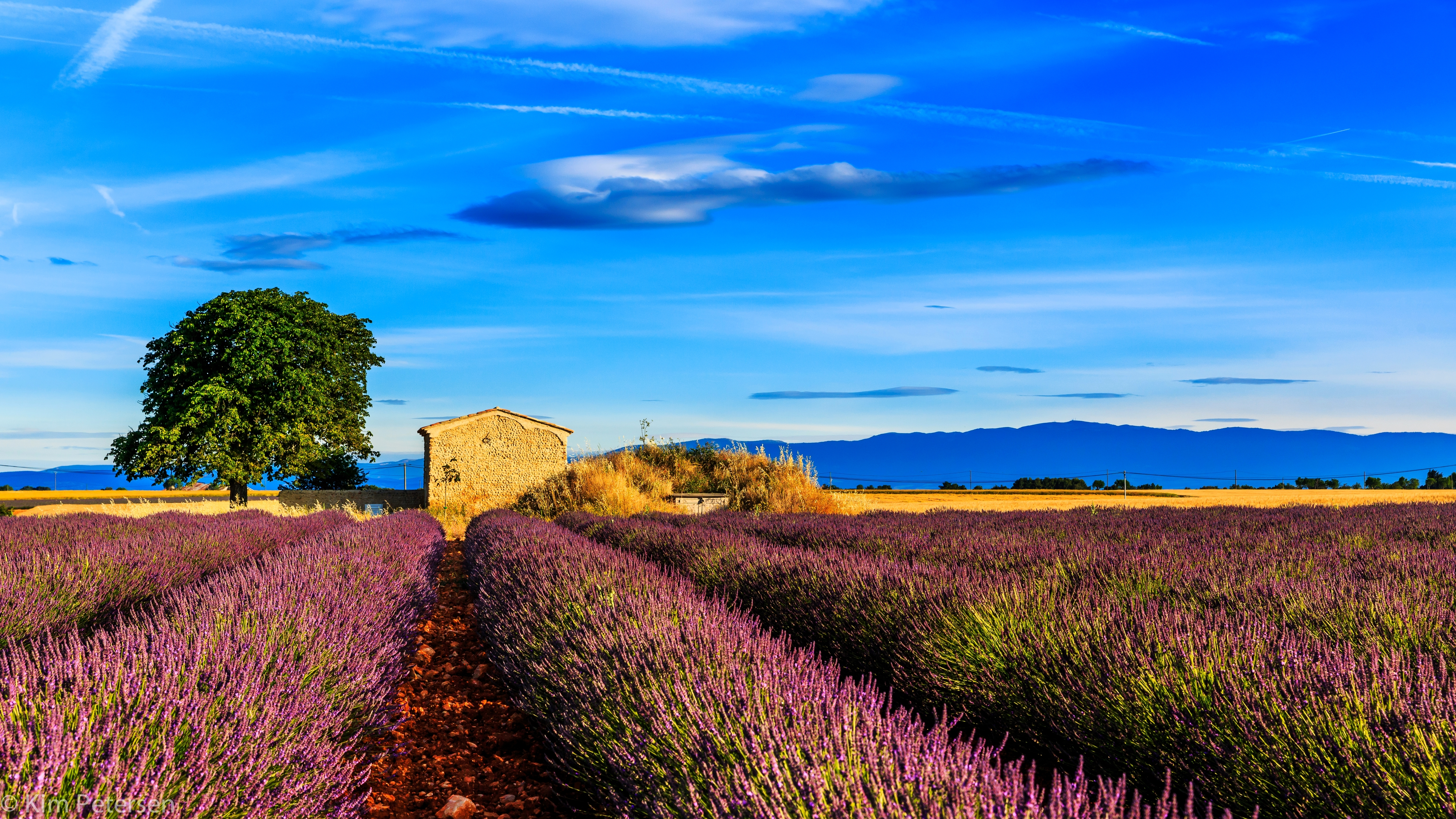 Download wallpaper 5512x3101 france provence field grass sky 5512x3101