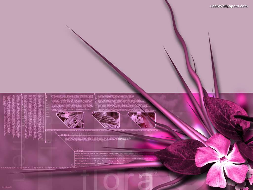 Desktop Wallpaper Desktop Hd Wallpapers 1024x768