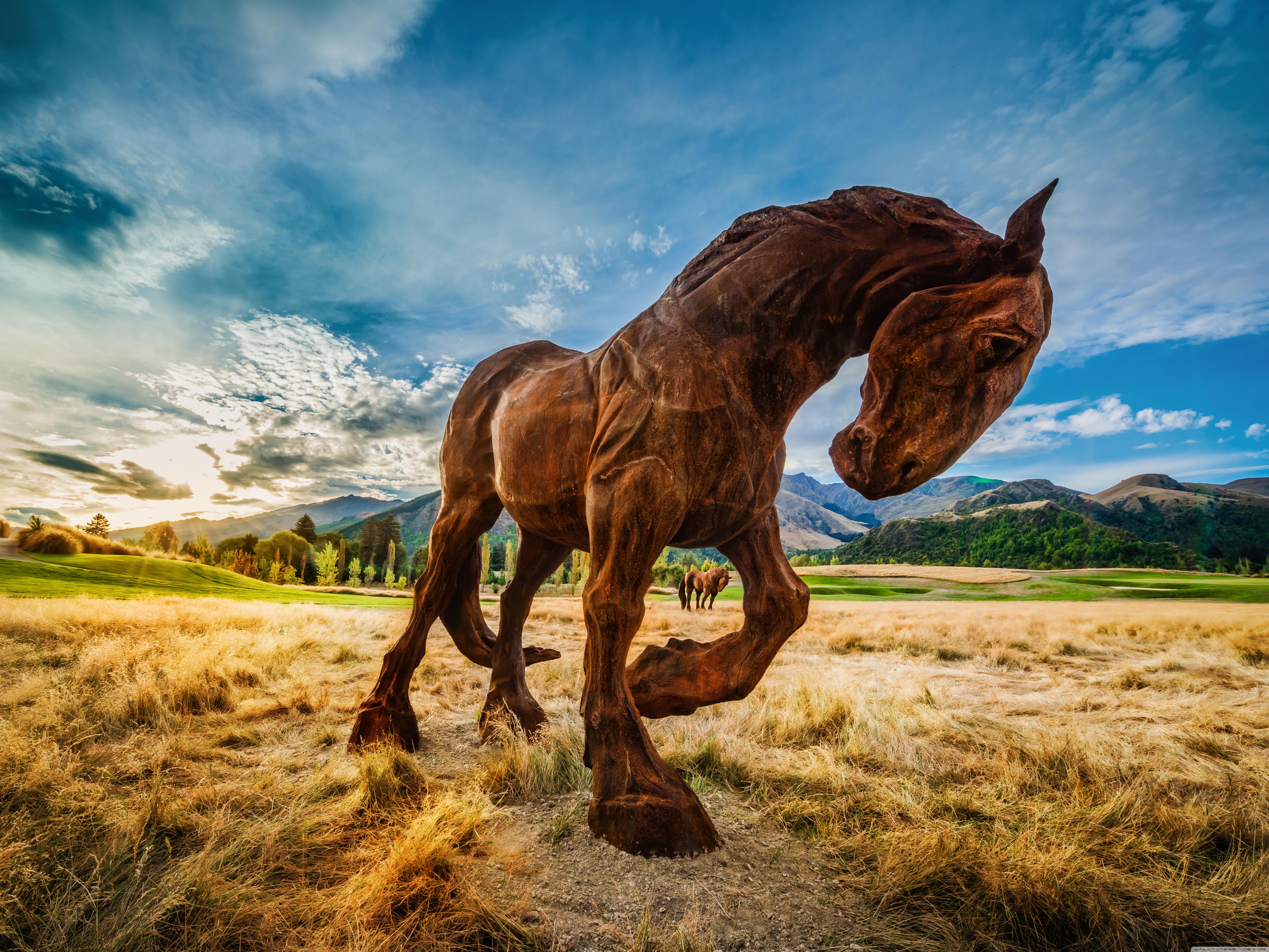 Wild Horse 4K HD Desktop Wallpaper for 4K Ultra HD TV Wide 6400x4800