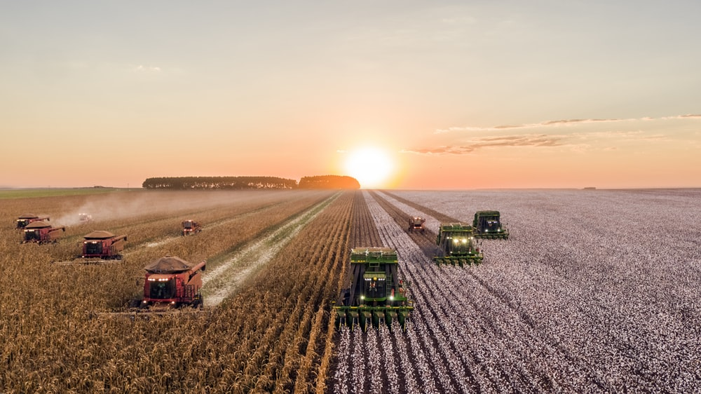 500 Agriculture Pictures Download Images on Unsplash 1000x562
